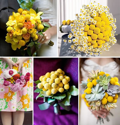Mixing traditional and bold flowers